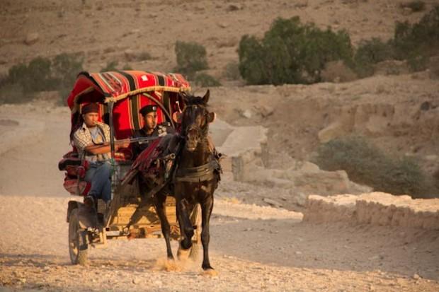 Horse-Drawn Carriage at Petra
